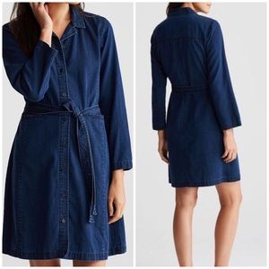 Eileen Fisher Tencel Organic Cotton Denim Dress